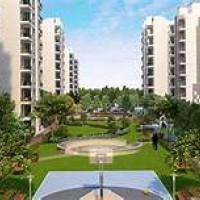 Acrenacres | Apartment in Panchkula, Zirakpur, Mohali, New Chandigarh, Mullanpur, Kharar