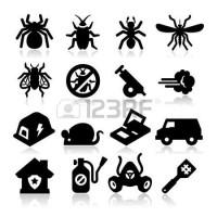 A1 Pest Control Services Antop Hill, Mumbai