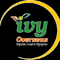 Ivy Overseas S.R. Nagar, Hyderabad