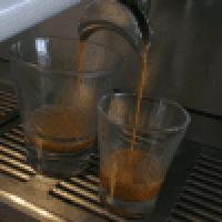 scorpio cafe